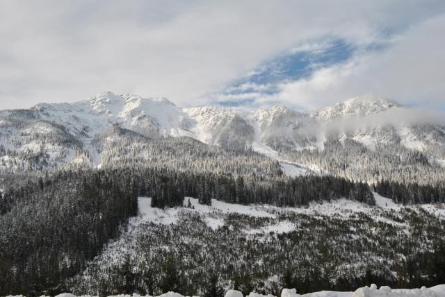 image winter1-jpg