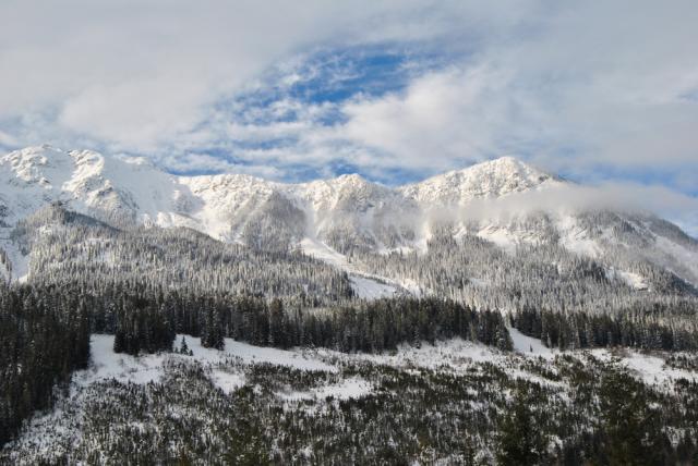 image winter4-jpg