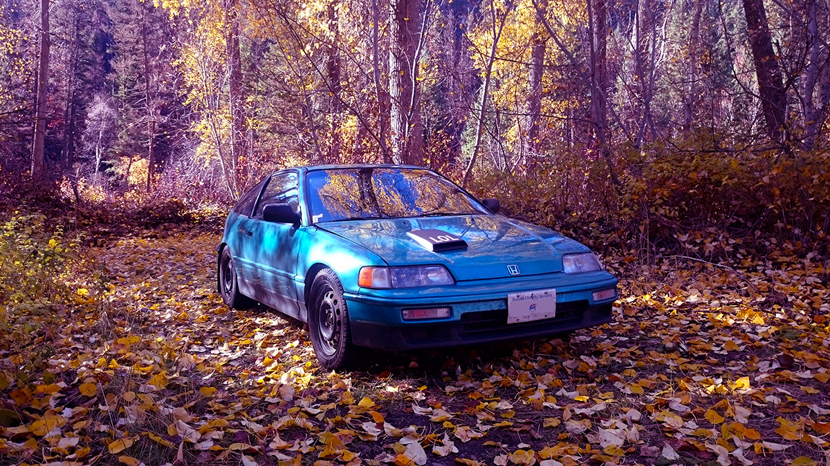 Quick Cruise and CRX Fall Photo
